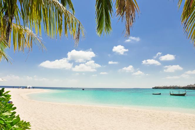 ESKA Odwołuje Zimę 2020: jak bardzo potrzebujesz rajskich wakacji?